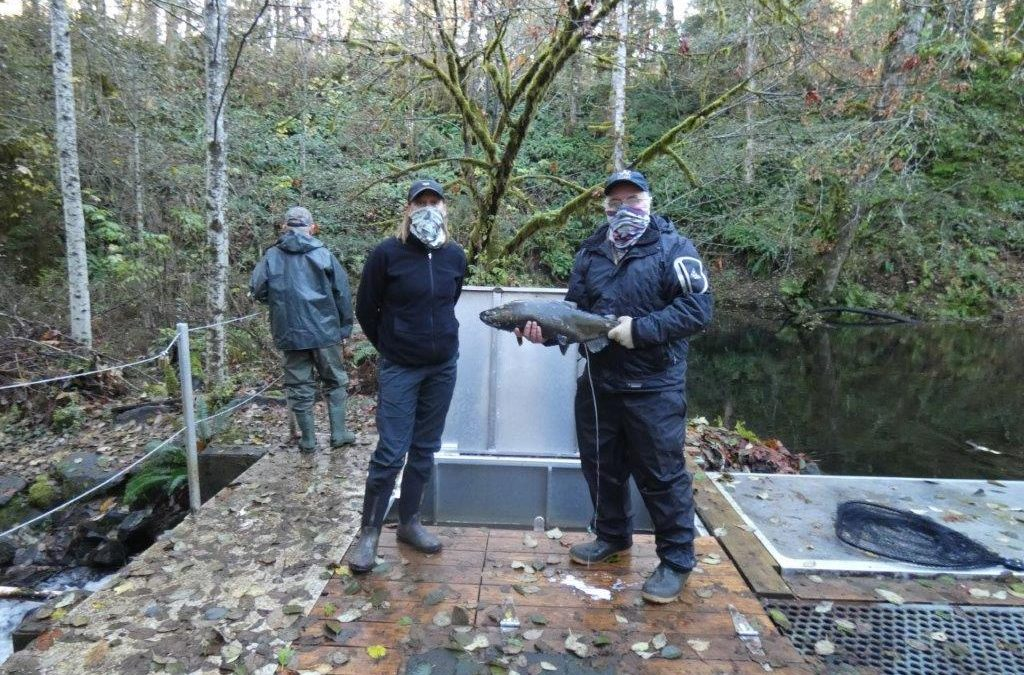 Oyster River Enhancement Society Project